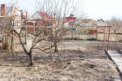 Giardini vuoti del cortile del paese in molla in anticipo Immagini Stock