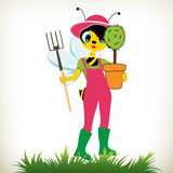 Giardiniere Bee Fotografie Stock