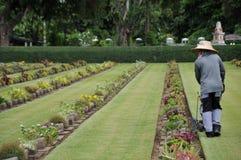 giardiniere che lavora al prato inglese in un cimitero con le lapidi nei precedenti Fotografia Stock