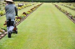 giardiniere che lavora al prato inglese in un cimitero con le lapidi nei precedenti Immagine Stock Libera da Diritti
