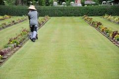 giardiniere che lavora al prato inglese in un cimitero con le lapidi nei precedenti Immagini Stock