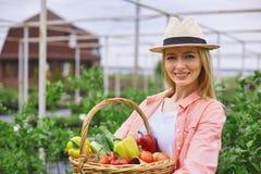 Giardiniere con i vegs Immagine Stock Libera da Diritti