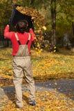 Giardiniere con il secchio pieno delle foglie Fotografie Stock