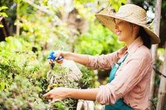 Giardiniere con la latta di innaffiatura Fotografia Stock