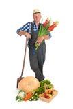 Giardiniere con la raccolta fotografie stock libere da diritti