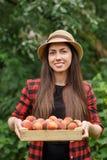 Giardiniere della donna con le pesche Fotografia Stock