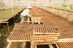 Giardiniere femminile che lavora nel giardino Immagine Stock
