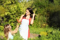 Giardiniere femminile che tiene le verdure organiche fresche dall'azienda agricola Tempo di raccolta Fotografie Stock