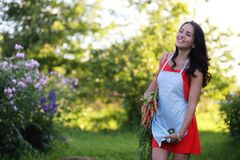 Giardiniere femminile che tiene le verdure organiche fresche dall'azienda agricola Tempo di raccolta Fotografia Stock