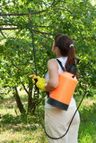 Giardiniere femminile con lo spruzzo del giardino dello zaino Fotografie Stock Libere da Diritti