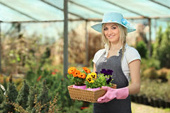 Giardiniere femminile in un giardino Fotografia Stock Libera da Diritti