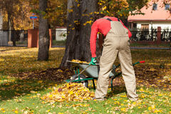Giardiniere lavorante in un giardino Fotografie Stock Libere da Diritti