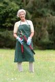 Giardiniere maggiore Fotografia Stock