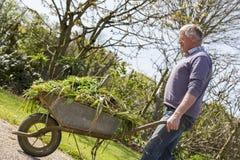 Giardiniere senior con la carriola Immagini Stock Libere da Diritti