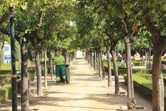 Giardiniere in un parco pubblico a Malaga Fotografie Stock Libere da Diritti