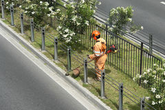 Giardiniere urbano Fotografie Stock