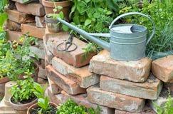 Giardino Immagine Stock