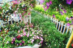 Giardino Immagine Stock Libera da Diritti
