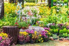 In giardino accogliente domestico su estate fotografia stock libera da diritti