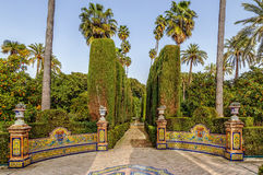 Giardino in alcazar di Siviglia, Spagna Fotografia Stock Libera da Diritti