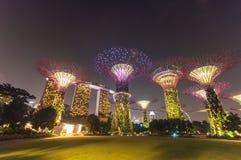 Giardino alla notte, Singapore di Supertree Immagine Stock Libera da Diritti