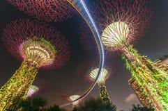 Giardino alla notte, Singapore di Supertree Fotografia Stock Libera da Diritti