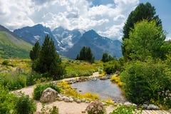 Giardino alpino, Francia Fotografie Stock