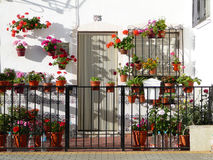 Giardino anteriore con i fiori Fotografia Stock