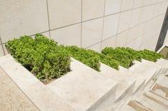 Giardino artificiale Immagini Stock