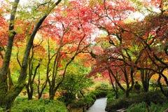 Giardino in autunno fotografia stock