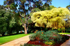 Giardino botanico Immagini Stock