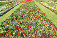 Giardino botanico Fotografie Stock Libere da Diritti