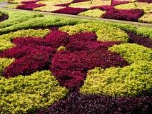 Giardino botanico Fotografie Stock