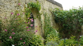 Giardino botanico al castello di Canon, Francia stock footage