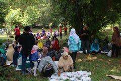 Giardino botanico in Bogor Fotografie Stock Libere da Diritti