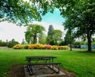 Giardino botanico a Christchurch, Nuova Zelanda fotografie stock libere da diritti