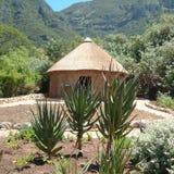 Giardino botanico a Città del Capo Fotografie Stock Libere da Diritti