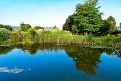 Giardino botanico con un lago Immagini Stock