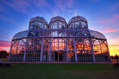 Giardino botanico, Curitiba, Brasile immagine stock libera da diritti