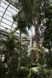 Giardino botanico degli Stati Uniti Fotografia Stock Libera da Diritti