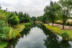 Giardino botanico 18 della Cina Shanghai fotografie stock libere da diritti