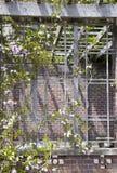 Giardino botanico di Auckland Immagini Stock