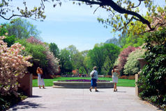 Giardino botanico di Brooklyn immagini stock libere da diritti