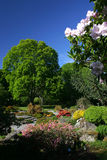 Giardino botanico di Christchurch Fotografia Stock