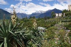 Giardino botanico di Merano Fotografia Stock Libera da Diritti