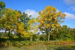 Giardino botanico di Montreal Immagine Stock