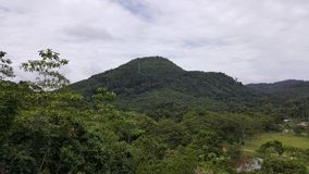 giardino botanico di seethawaka Fotografia Stock Libera da Diritti
