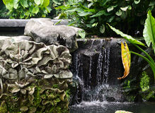 Giardino botanico di Singapore Cascata Immagine Stock