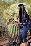 Giardino botanico Phoenix Arizona del deserto fotografia stock libera da diritti