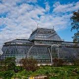 Giardino botanico a St Petersburg Immagine Stock Libera da Diritti